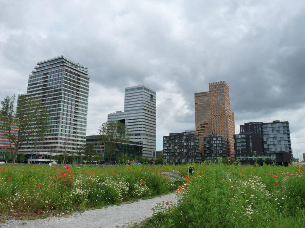 P1270183-001 - amsterdam