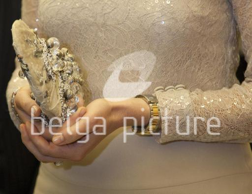 picture 35851962 preview watermark -