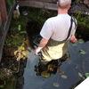 Tuin - vijver veranderen 20... - Vijver veranderen 20-06-12