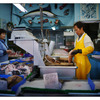 Fish Monger - British Columbia Canada