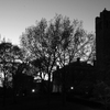 Tufts' Chapel and Academic ... - Travels in Black & White