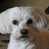 Cindy 09-07-12 2 - Bij de achterburen