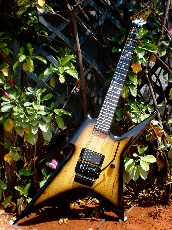 Bc rich dating