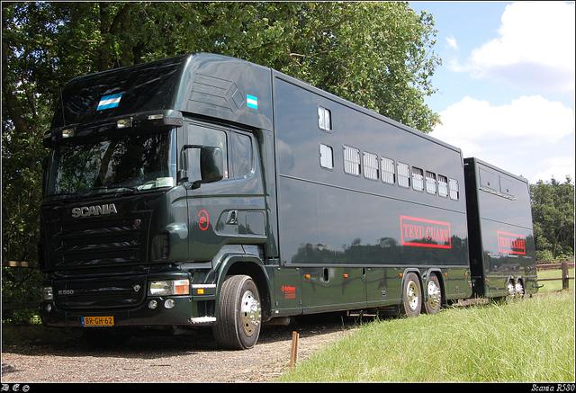 DSC 7464-border paardentruck