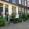 P1090310 - amsterdamsite2