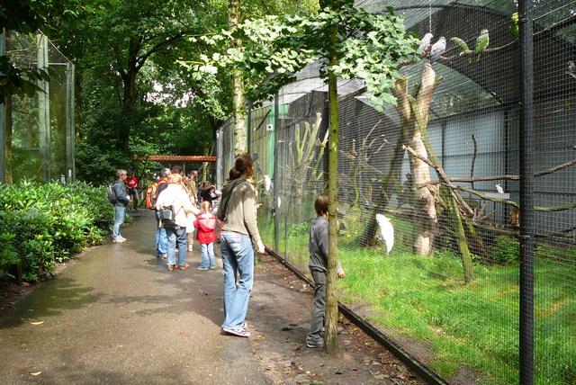 P1090647 Papegaaienpark Veldhoven
