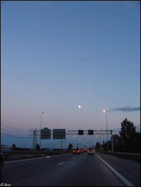 img 5171-border Dagje Spotten 02-11-2006