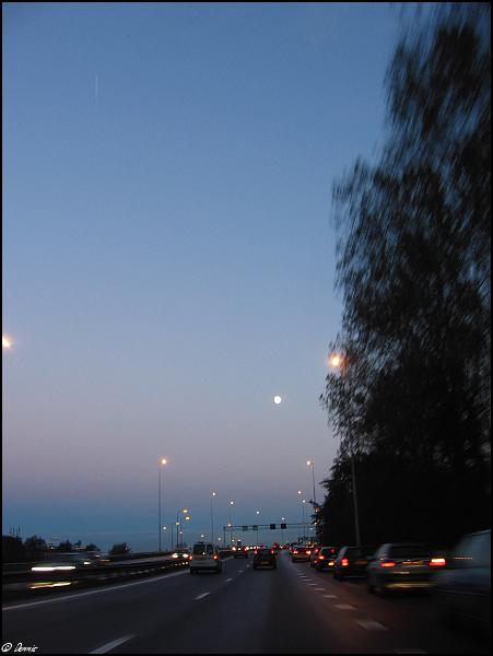img 5174-border Dagje Spotten 02-11-2006