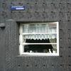 P1100899 - amsterdamsite4