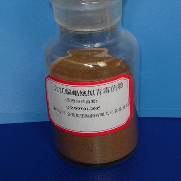 Fermentation-Cordyceps-CS-4-Powder-WF-002- -