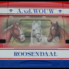 DSC 6368-border - Wouw, v/d - Roosendaal
