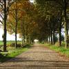 Herfst 2 - Nature calls