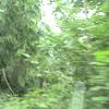 DSC00095 - us 2008
